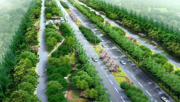 浦东道路绿化 道路绿化